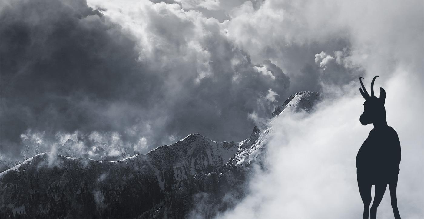 AlpenholzprojekteBeratung Planung Gestaltung
